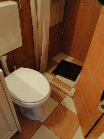 Limestone House: tiny bathroom