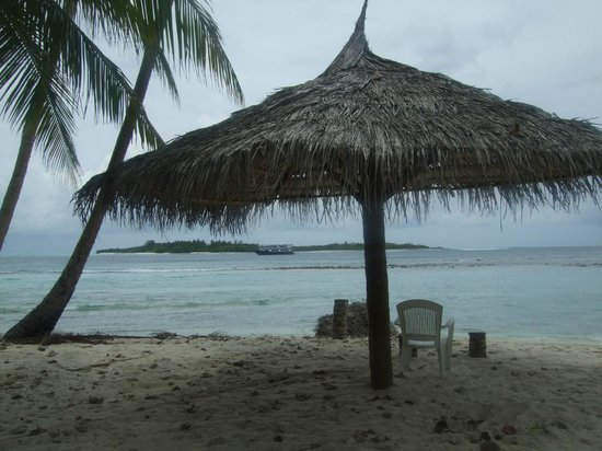 Cokes Surf Shack : Relaxation
