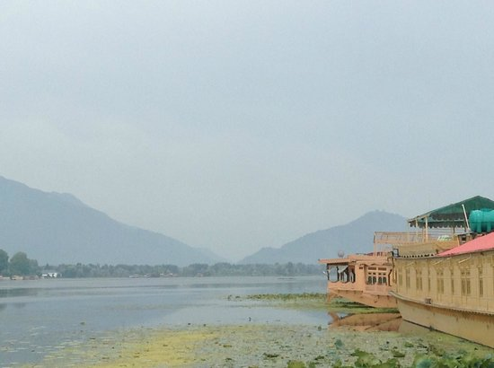 Mascot Houseboats: View from houseboat