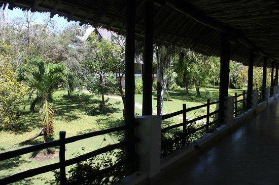 Leopard Beach Resort & Spa: Blick in den wunderschönen Garten