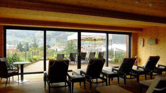 Hotel Gruner Baum : Vista panoramica della zona relax