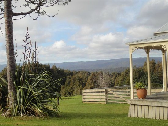 Waipoua Lodge: View of forest from corner of lodge