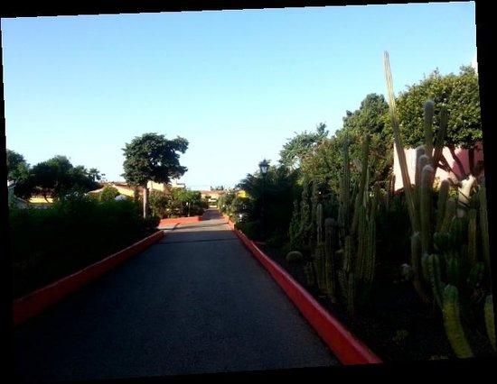 Marbella Playa Hotel: ZONAS COMUNES DEL HOTEL