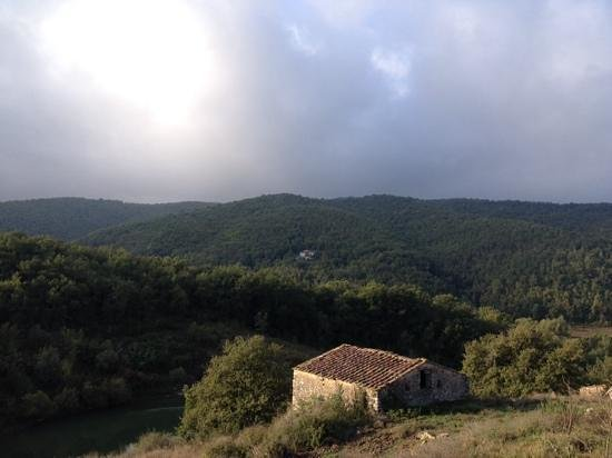 Agriturismo Podere Tegline : view from the hill at Tegline