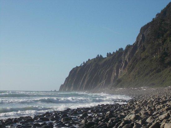 The Awtrey House: Beach View