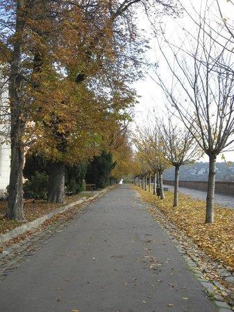 Arpad Toth Promenade (Setany)