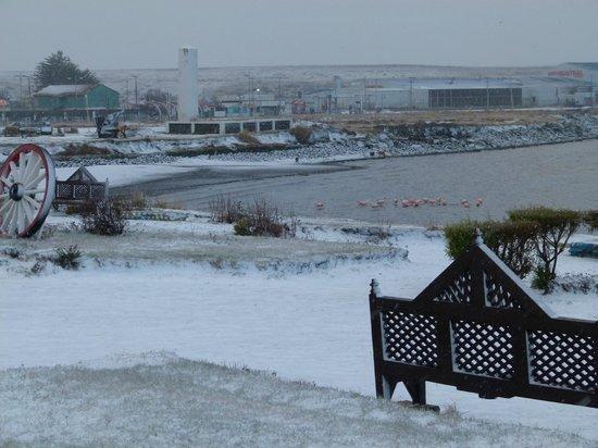 Tierra del Fuego, Chile: Snowing in Porvenir