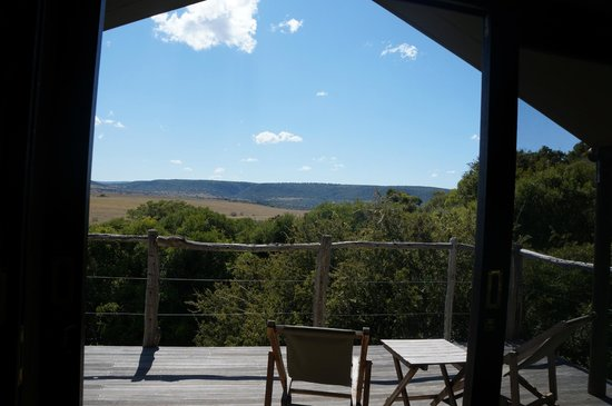 HillsNek Safaris, Amakhala Game Reserve : View from our room