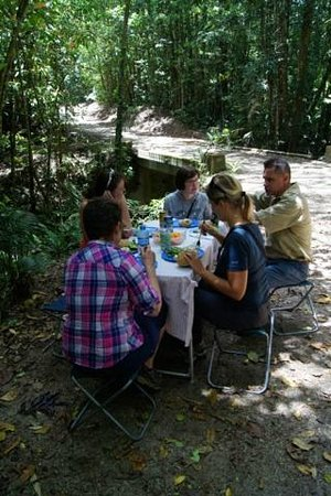 Wilderness Eco Safaris: Lunch in the forest