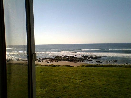 The Coho Oceanfront Lodge: View from pet friendly room