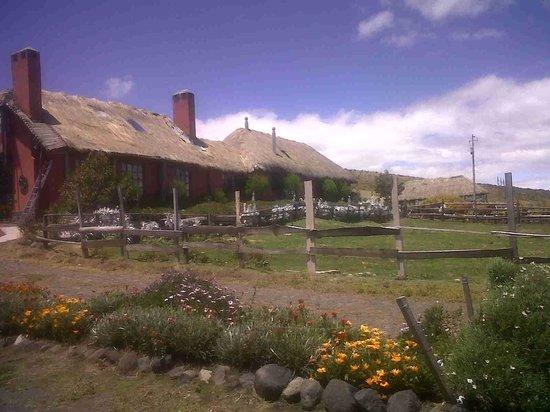 Hacienda El Porvenir / Tierra del Volcan: Áreas de la hacienda