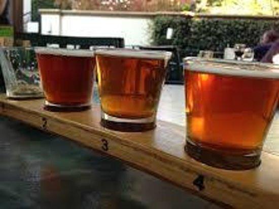 Sierra Nevada Brewing Company: Beer Sampler