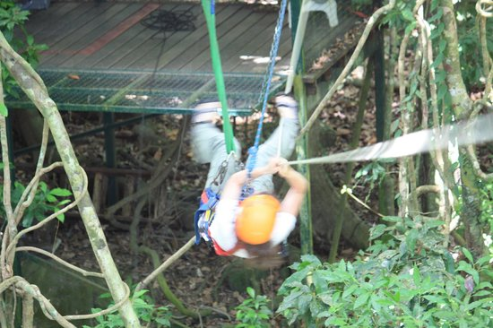 Jungle Surfing Canopy Tours: The challenge - pull yourself up the first station