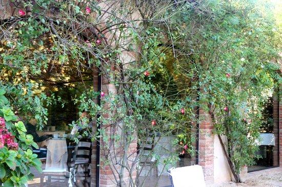 Villa Cicolina: Rose-covered Dining Room