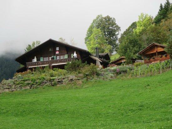 Silvi's Dream Catcher Inn Guesthouse: approaching home