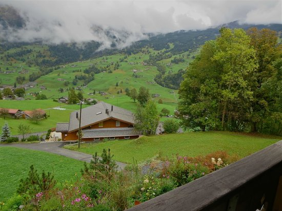 Silvi's Dream Catcher Inn : view from our deck off bedroom