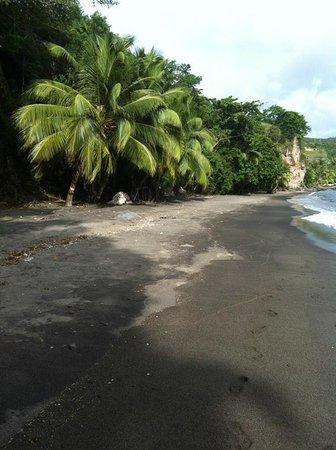 Manicou River: nearby beach
