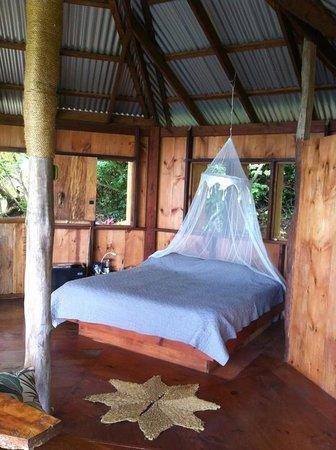 Manicou River: cabin