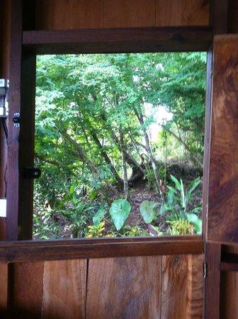 Manicou River: cabin door