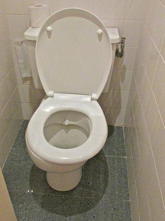 Mercure Nice Centre Notre Dame: Toilet...seat askew