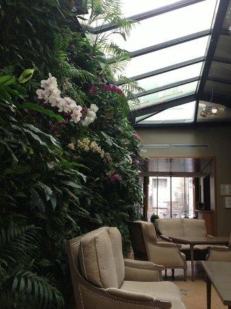 Hotel Pas de Calais: O hall social é aconchegante e charmoso, com sua parede de orquídeas