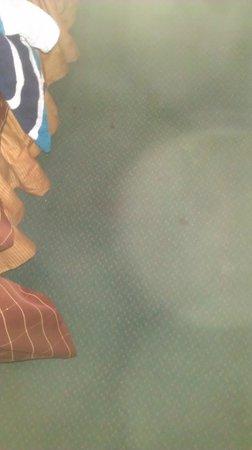 Orlando Metropolitan Resort: another image blood stain carpet