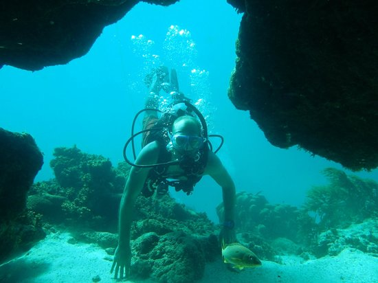 Scuba School And Family Dive Center Belize: Our first swim through