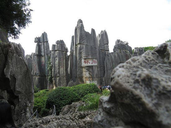 Yunnan Stone Forest Geological Park: 石林