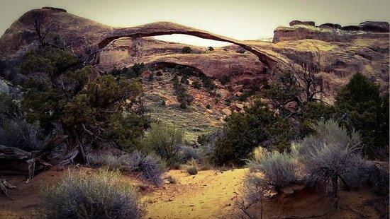Southwest Adventure Tours Day Trips : Landscape Arch