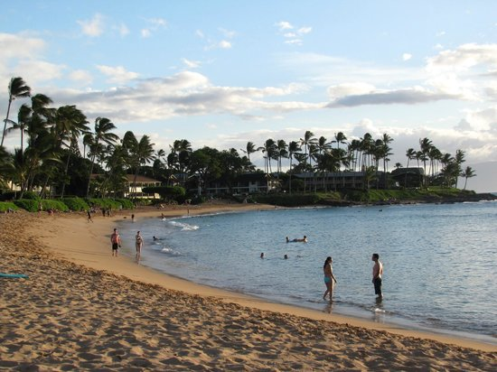 Napili Kai Beach Resort: The beach