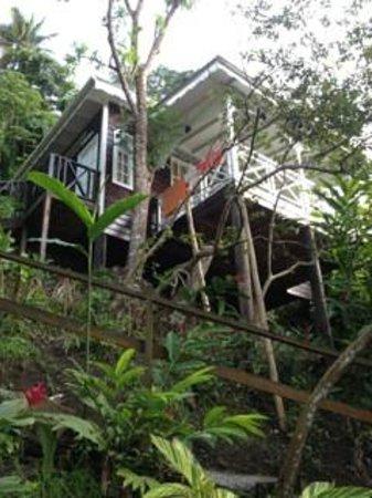 Fond Doux Plantation & Resort : Hilltop Cocunut