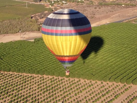 California Dreamin' Balloon Adventures : The perfect day
