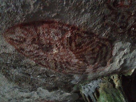 Arikok National Park, Aruba: 1000 year old drawing of a turtle
