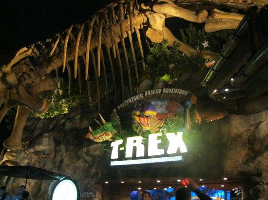 Luminaria picture of t rex orlando tripadvisor for Restaurant t rex