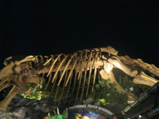 Luminaria picture of t rex orlando tripadvisor for T rex location