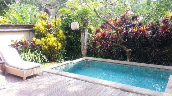 The Ubud Village Resort & Spa : 部屋から見えるプール