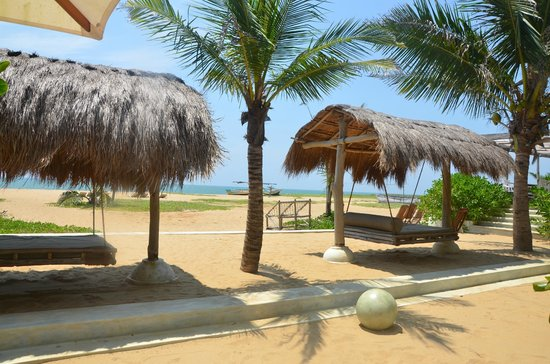 Dolphin Beach Resort: Hammock Beds... for a lazy afternoon