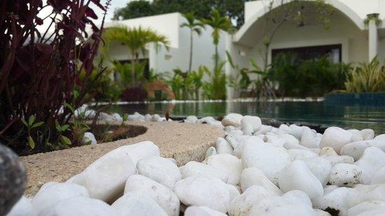 Navutu Dreams Resort & Wellness Retreat: View from salt pool