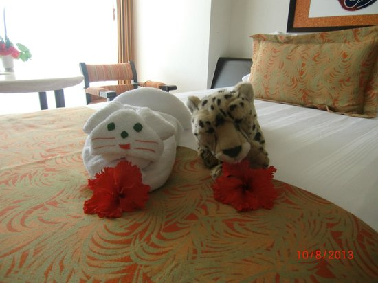 "Presidente Inter-Continental Cozumel Resort & Spa: House staff made sure ""Flash"" had company"