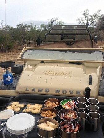 Ulusaba Rock Lodge: game drive breakfast