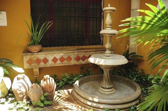 Luz En Yucatan : Fountain