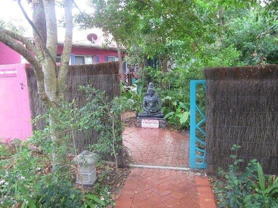 Dolphins Beach House: Backpacker entrance