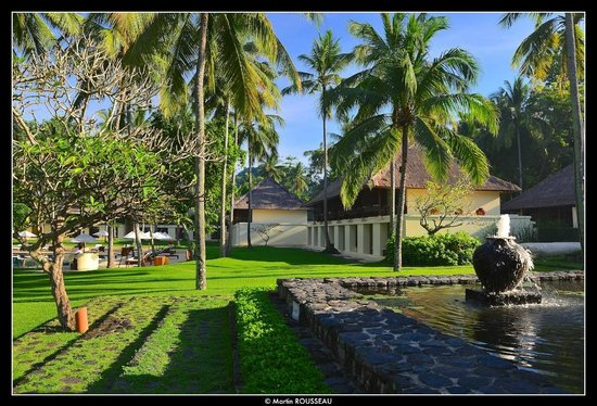 Alila Manggis: Surrounded by nature