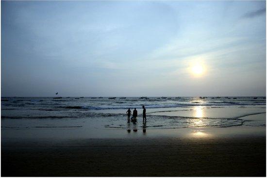 La Calypso Goa: Baga Beach