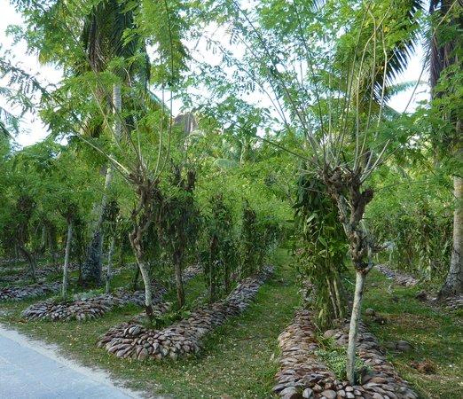 Chalets d'Anse Reunion : domaine de l'union