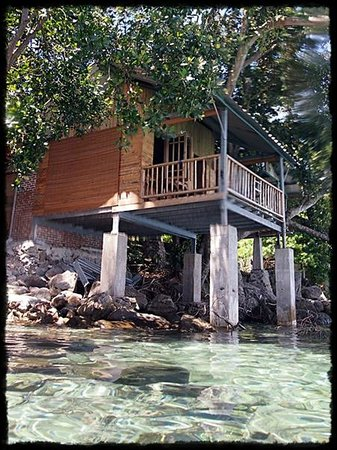 Looking up at my hut while snorkeling.