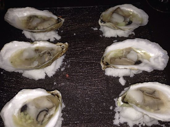 Lucca Back Bay: Oysters are amazing