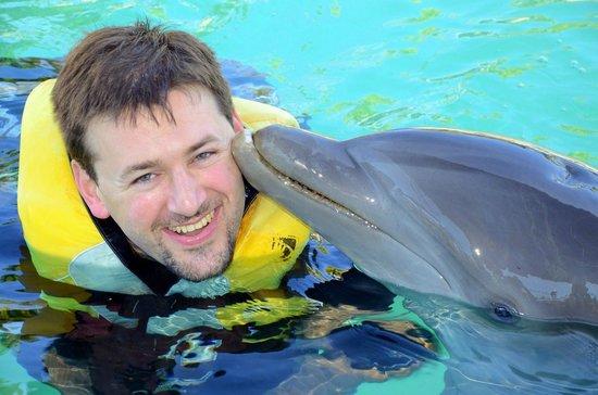 Villas Agua Dulce : dauphins