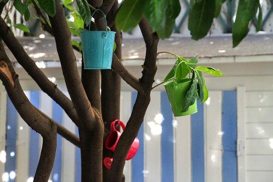 Hotel Villa Sorel: Le jardin