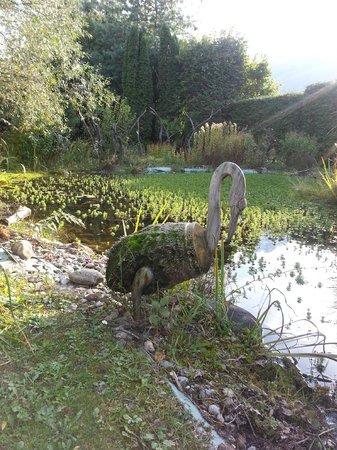 La Maison du Directeur : le jardin